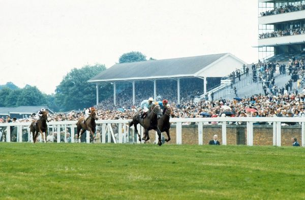 Horse racing : Sun Prince ridden by Joe Mercer. Sparkler ridden by Lester Piggott and Parachuting ridden by Christy Roche. Queen Anne Stakes Royal Ascot 19/06/1973 Credit : Colorsport