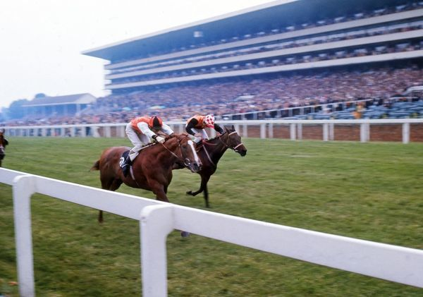 Horse racing : Full of beans ridden by Paul Cook (orange) wins from Cumbernauld ridden by Tony Murray. The Royal ascot stakes. Ascot 19/06/1973 Credit: Colorsport