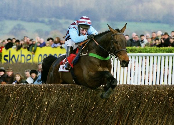 National Hunt Horse Racing - Cheltenham Festival 2003 - The Gold Cup Best Mate ridden by Jim Culloty comes home to win the Gold Cup