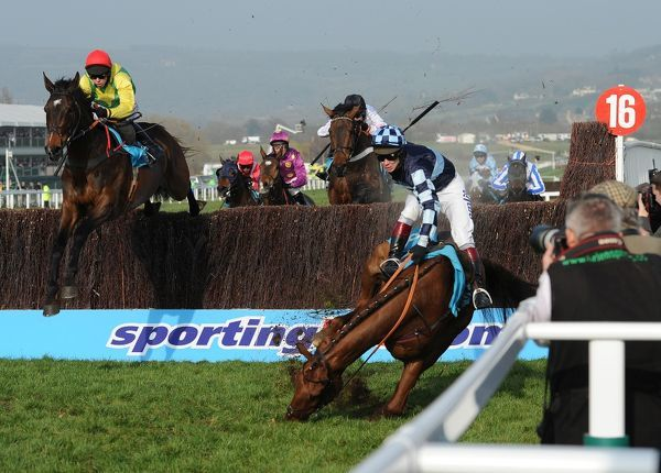 Horse Racing - Cheltenham Festival - Day 2 - Ladies Day Wishful Thinking ridden by Richard Johnson falls at the final fence and horse and rider crash into photographers at the side of the course, in the Queen Mother Champion Steeple Chase at