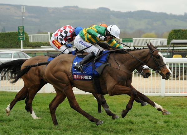 Horse Racing - Cheltenham Festival - Day 4 - The Gold Cup Synchronised (left) ridden by A P McCoy runs for the line on it's way to winning the Gold Cup at Cheltenham Racecourse