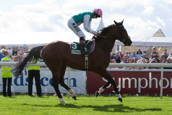 Horse Racing - Ebor Festival 2012 - York Racecourse Frankel, ridden by Tom Queally before the Juddmonte International Stakes