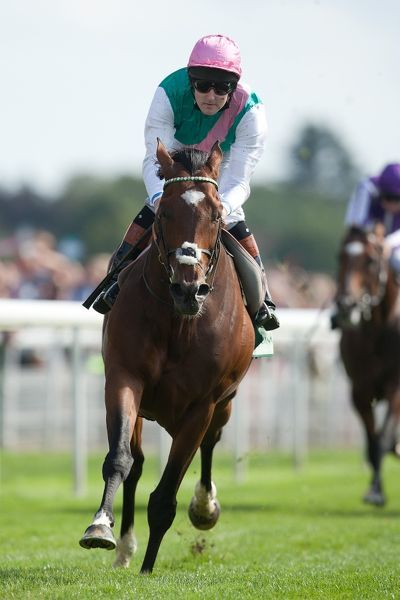 Horse Racing - Ebor Festival 2012 - York Racecourse Frankel, ridden by Tom Queally leads on the home straight in the Juddmonte International Stakes