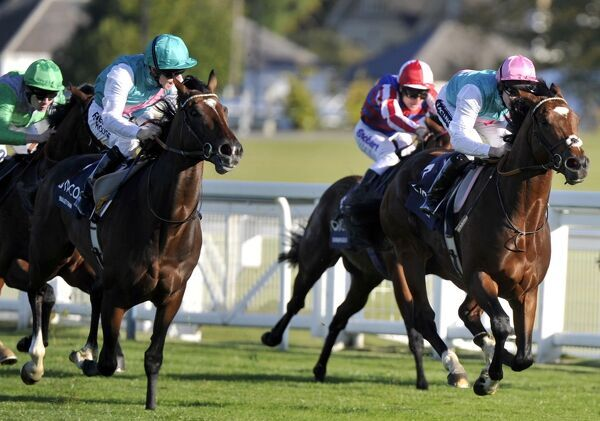 Horse Racing - 2011 QIPCO British Champions Day - Ascot Racecourse Stable jockey Ian Mongan on Bullet Train (Frankel's three-parts brother), left, look on in disbelief as Frankel, ridden by Tom Queally, eases past him on the way to victory in