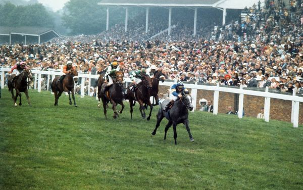 Horse racing : Habat ridden by Pat Eddery wins the Norfolk stakes. Ascot 21/06/1973 Credit: Colorsport