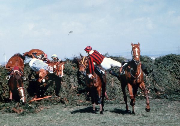 National Hunt Horse Racing - Aintree - The Grand National 1979  A number of jockeys fall at The Chair
