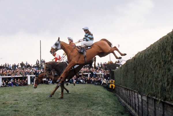 National Hunt Horse Racing - Aintree Grand National 1975  Eventual race winner L'Escargot ridden by Tommy Carberry (4) jumps Beechers brook Credit