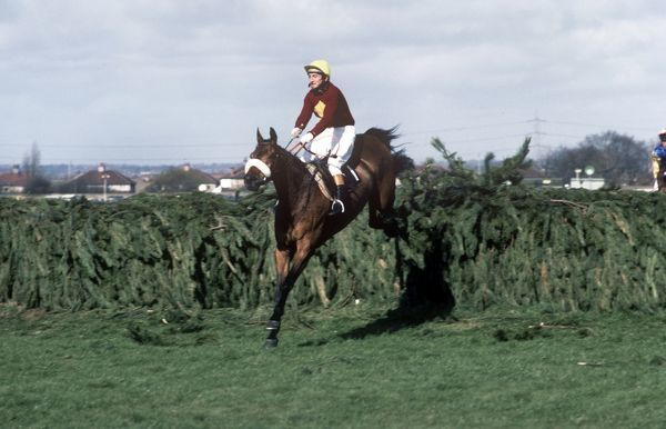 National Hunt Horse Racing - Aintree - Grand National 1977 Jockey Tommy Stack on Red Rum jumps the last fence before winning the race. It was Red Rum's third and final Grand National victory
