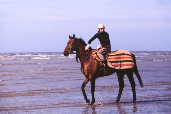 National Hunt Horse Racing Red Rum relaxes in the sea on Southport beach prior to the 1980 Grand National