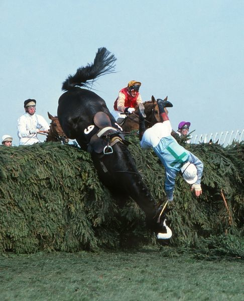 National Hunt Horse Racing - Aintree - The 1980 Grand National Rubstic, winner of the race the previous year, falls at the Chair