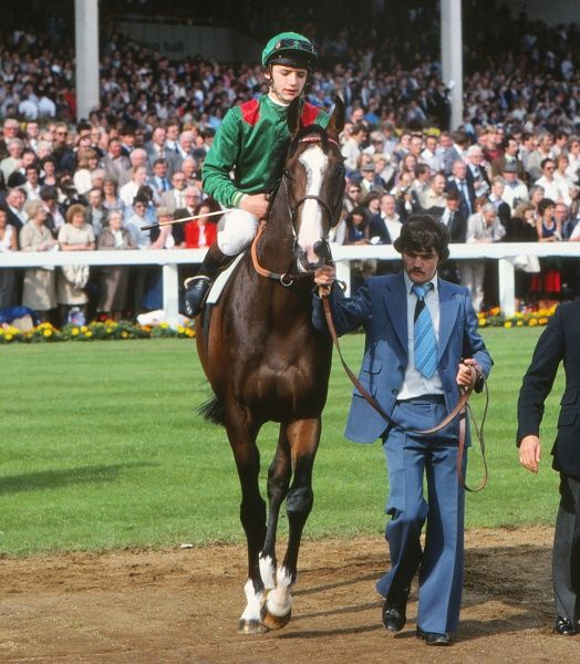 Horse Racing - 1981 St. Leger Stakes - Doncaster Shergar, ridden by Walter Swinburn, is paraded before the race