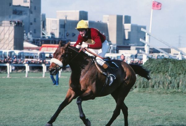 National Hunt Horse Racing - 1977 Grand National - Aintree Jockey Tommy Stack on Red Rum race to the line after jumping the last to win the race. It was Red Rum's third and final Grand National victory