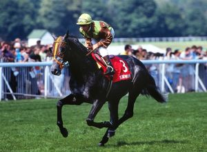 1992 Champion Jockey Michael Roberts on Terimon