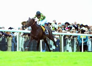 1999 Royal Ascot - Gold Cup