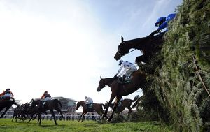 2011 Grand National