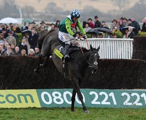 AP McCoy on Denman jumps the final fence of the 2010 Gold Cup