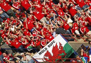 British Lions fans in South Africa in 2009