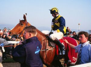 Cheltenham Festival - The Champion Hurdle