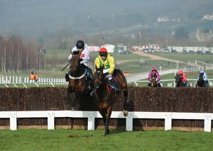 Cheltenham Festival: Day Two