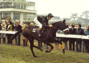David Mould on Blue Shore at the 1974 Cheltenham Festival