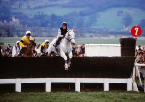Desert Orchid in action in the 1990 Gold Cup.