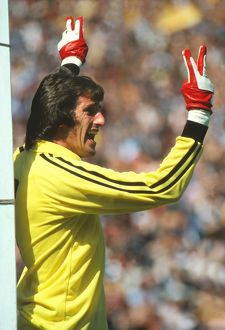 England's Ray Clemence - 1980 British Home Championship
