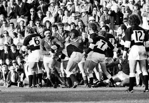 Fighting breaks out between Natal and the British Lions in 1974