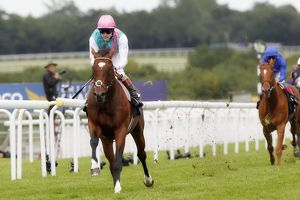 Frankel - 2011 Sussex Stakes