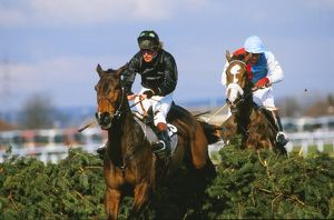Hallo Dandy, ridden by Neale Doughty, on the way to winning the 1984 Grand National