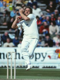 Ian Botham - 1981 Ashes