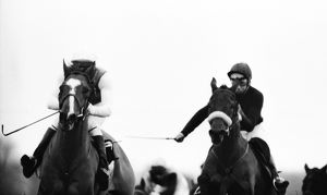 Red Candle and Red Rum ride in the 1973 Hennessey Gold Cup