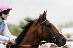 Tom Queally & Frankel - 2011 Sussex Stakes