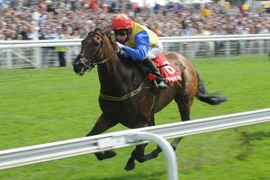 Yorkshire Ebor Festival - The Betfred City of York Stakes