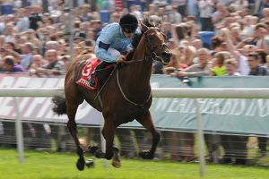 Yorkshire Ebor Festival - The Betfred Melrose Stakes